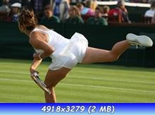 http://i4.imageban.ru/out/2013/07/01/3927f805c7b76b215aec908e2cb53fe0.jpg