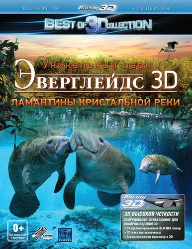 Изображение для Эверглейдс 3Д: Ламантины Кристальной реки / Adventure Everglades 3D: The Manatees of Crystal River (2012) [Blu-ray 1080p BD3D] (кликните для просмотра полного изображения)