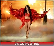 http://i4.imageban.ru/out/2013/11/15/c0b33213d3372f40861f58b39658dcd7.jpg