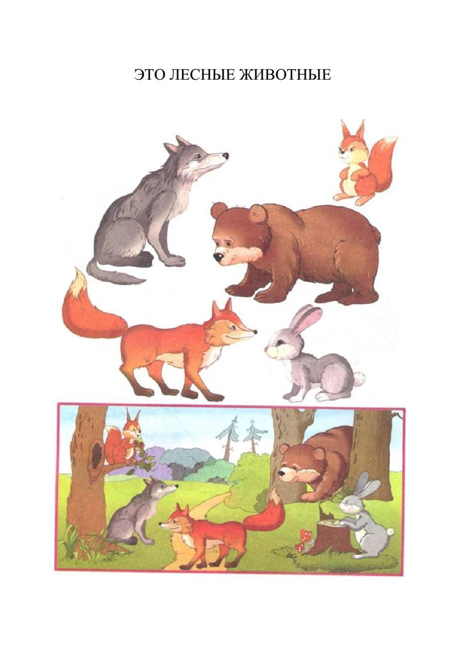 Картинки лесных животных для детей детского сада 6