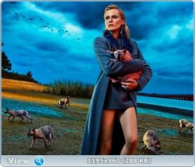 http://i4.imageban.ru/out/2014/11/04/6c67174f5ea633ae4f028fba8c19cb15.jpg