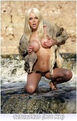 http://i4.imageban.ru/out/2014/11/08/4de4c53e55273389c5ef59bc073769c1.jpg