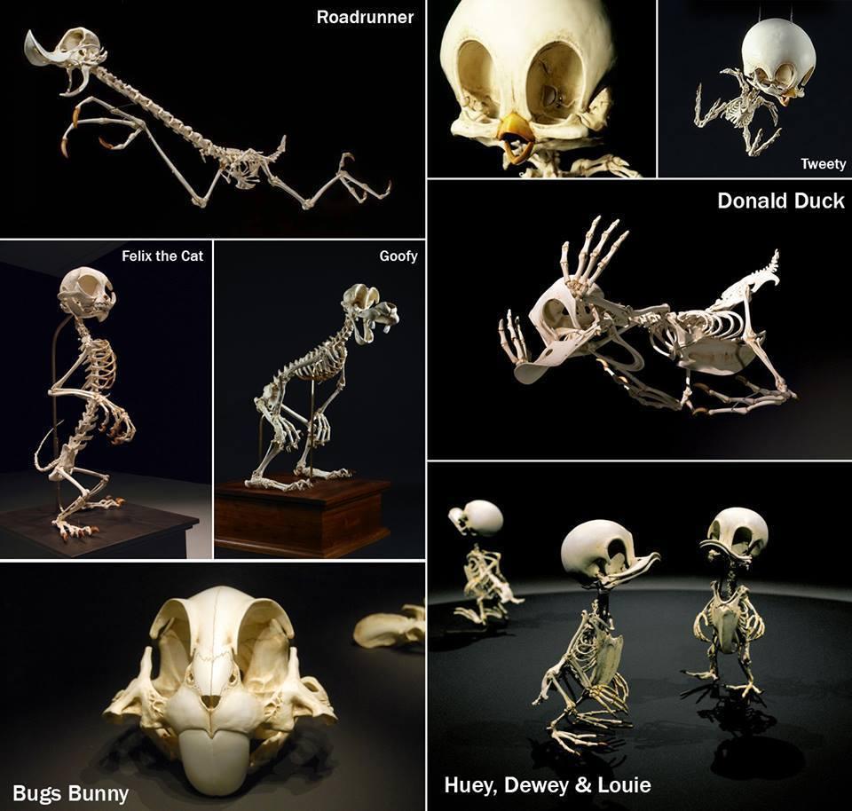 Скелеты мультяшек 1