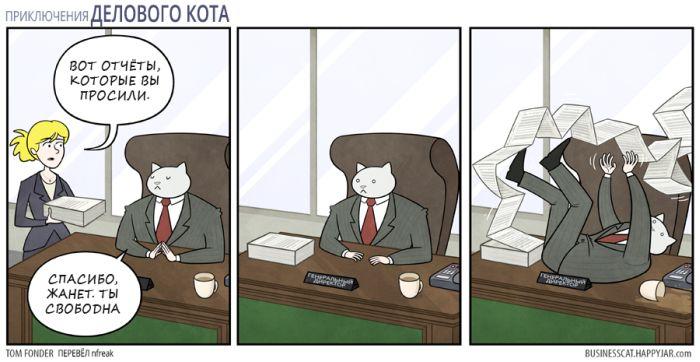 Отчеты для делового кота 1