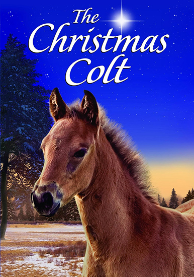 �������������� ��������� / The Christmas Colt (2013) DVB | MVO