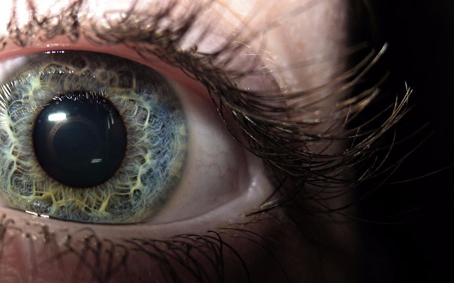 Глаз в макро