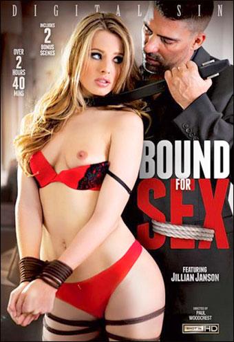 Digital Sin - Граница между сексом / Bound For Sex (2015) WEB-DLRip