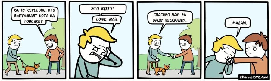 Выгул кота