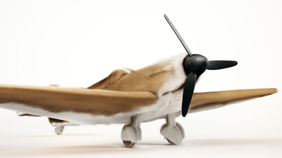 Самолет в корги-расцветке