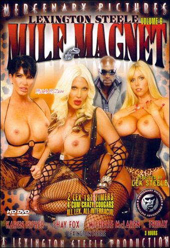 Магнит для мамочек 6 / MILF Magnet 6 (2011) DVDRip |