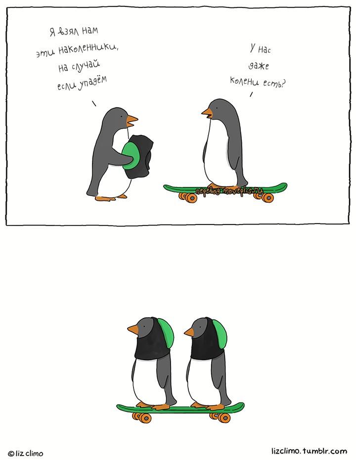 Наколенники для пингвинов