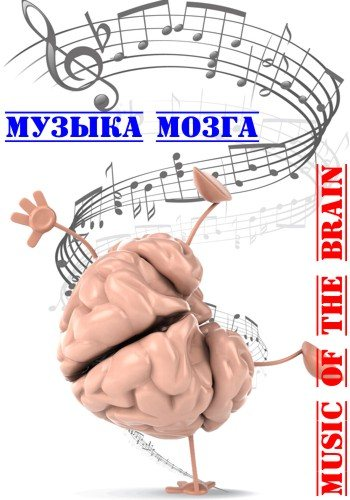 Da Vinci Learning: Музыка мозга / Music of the Brain (2009) SATRip
