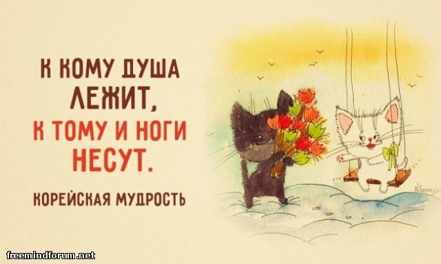 http://i4.imageban.ru/out/2015/08/31/874c275cd3c9c2cc2b860fb8446668ed.jpg