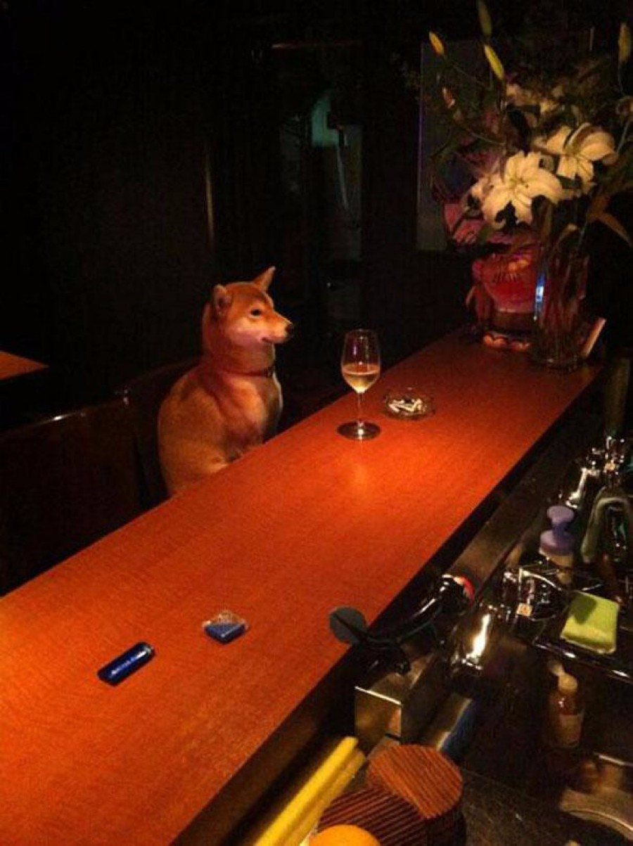 Пёська в баре