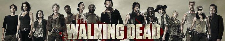 The Walking Dead S06E07 720p HDTV x264-MIXED
