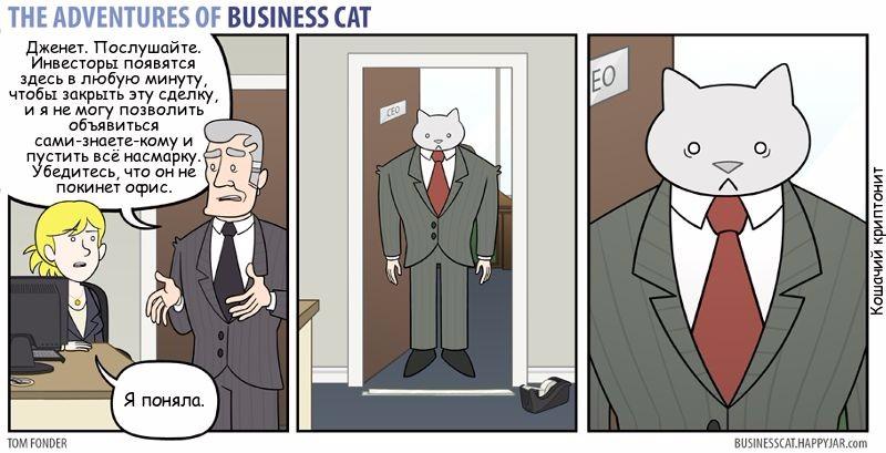 Кот-бизнесмен и ловушка в проходе