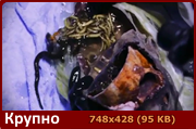 http://i4.imageban.ru/out/2016/01/15/886eb30d873f2e0316eea1c339236cde.png