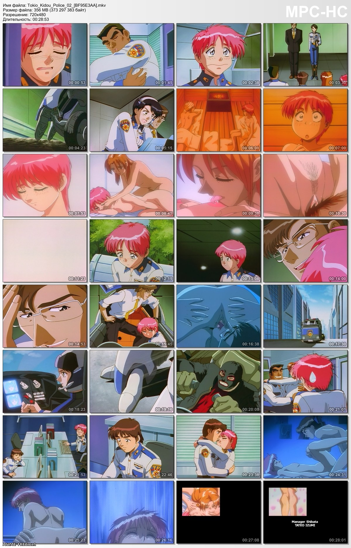 Tokio Private Police / Tokio Mobile Police / Tokio Kidou Police / Токийская Частная Полиция [2 из 2] [RUS,JAP,ENG] Anime Hentai
