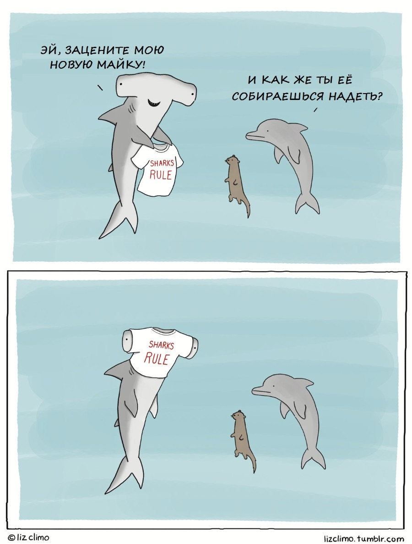 Акулы рулят