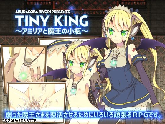 TINY KING ~ Amiria and archenemy of the vial ~ [2016] [Cen] [jRPG] [JAP] H-Game