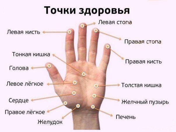 http://i4.imageban.ru/out/2016/08/19/71d65020563ff017562ba0f98b78b191.jpg