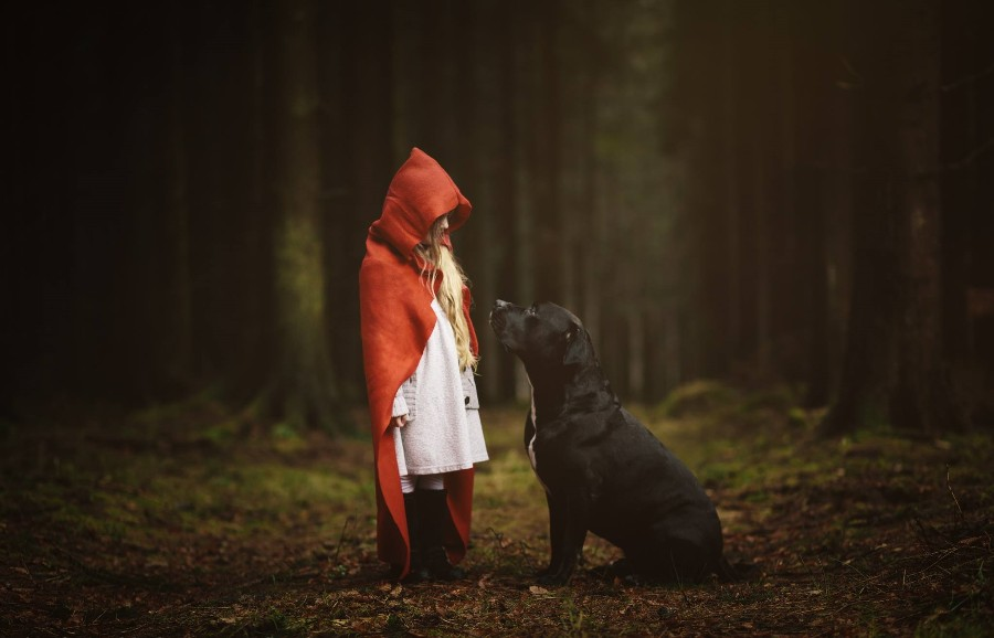 Красная шапочка