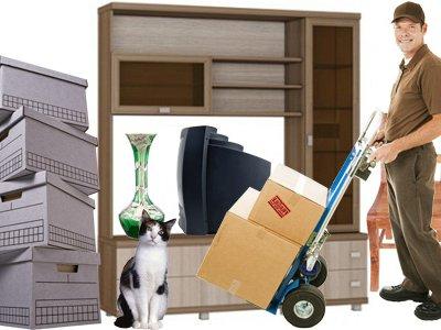 Офисный переезд: особенности и некоторые тонкости организации