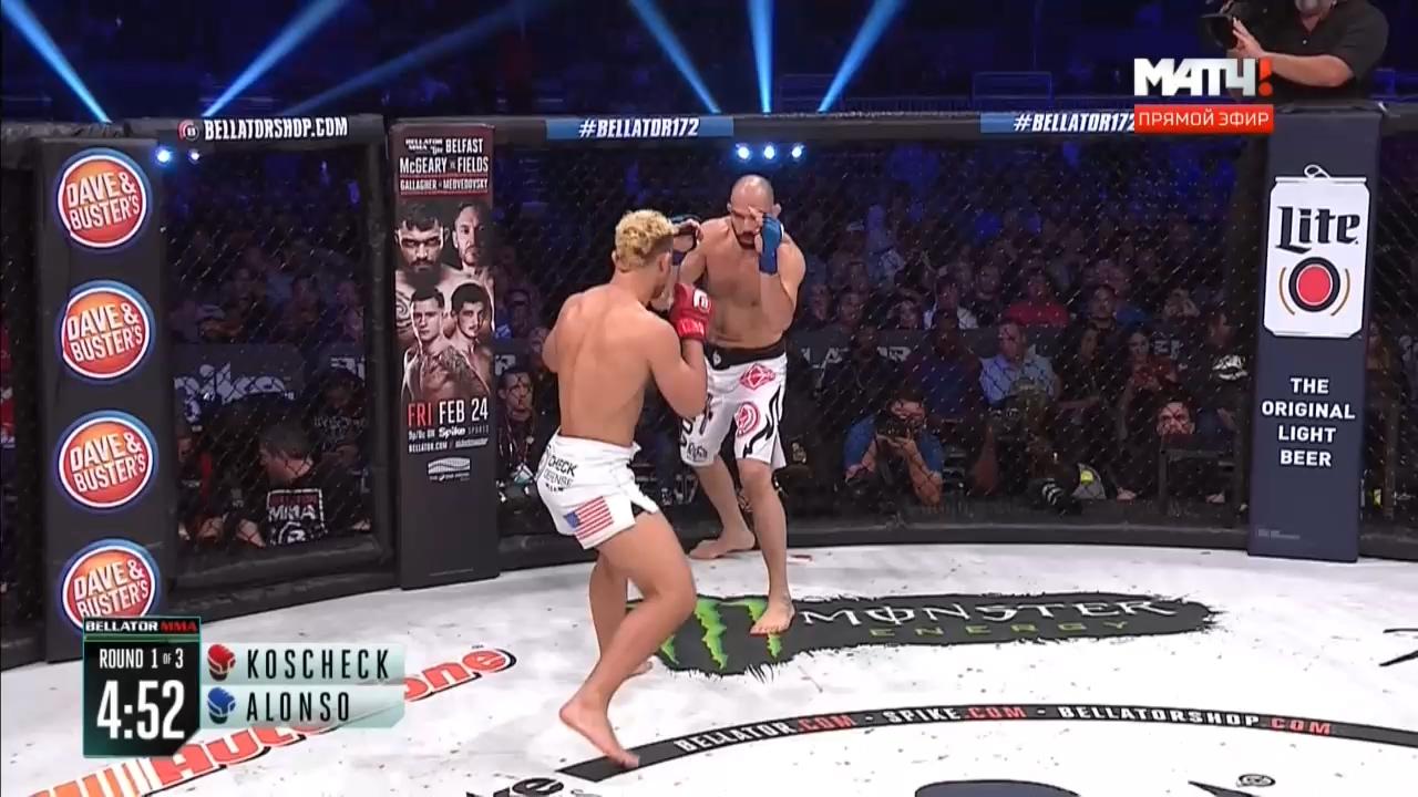 Смешанные единоборства MMA. Bellator 172: Федор Емельяненко - Мэтт Митрион | WEB-DL 720p