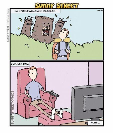 Как избежать атаки медведя