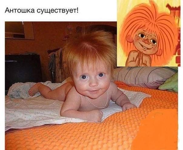 http://i4.imageban.ru/out/2017/07/15/637f4082c1eefcd70bb66c7847850b56.jpg