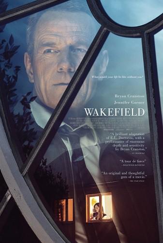 Wakefield 2017 DVDRip XviD AC3-EVO