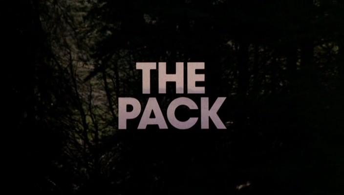 Стая   (ужасы, триллер 1977 год).0-00-33.759.jpg