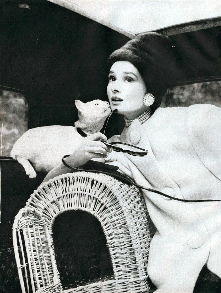 Audrey Hepburn cat%% g5.jpg