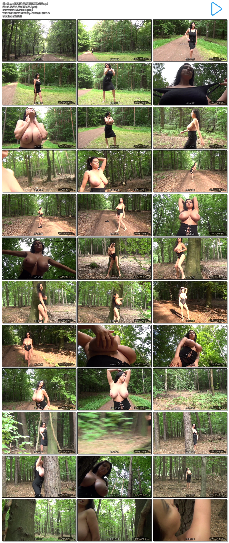 EROTIC FOREST FANTASIES.mp4.jpg