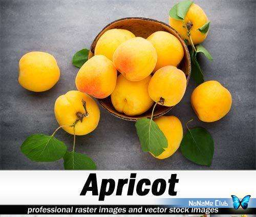 Растровый клипарт - Fotolia - Apricot [JPG]