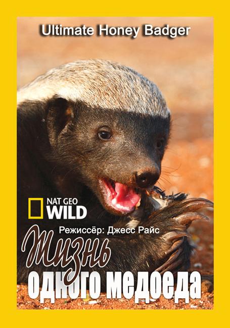 National Geographic: Жизнь одного мёдоеда / Ultimate Honey Badger (2013) HDTVRip 720p | D