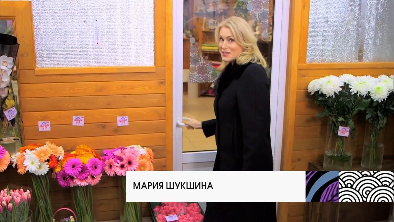 В гости по утрам с Марией Шукшиной [01-04] (2018) WEBRip 720p