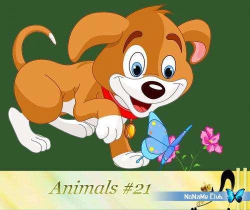 Растровый клипарт - Animals #21 [PNG]