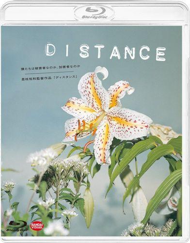 Расстояние / Издалека / Дистанция / Distance (Хирокадзу Корээда / Hirokazu Koreeda) [2001, Япония, драма, BDRip 720p] AVO (Алексеев) + Sub Eng + Original Jpn