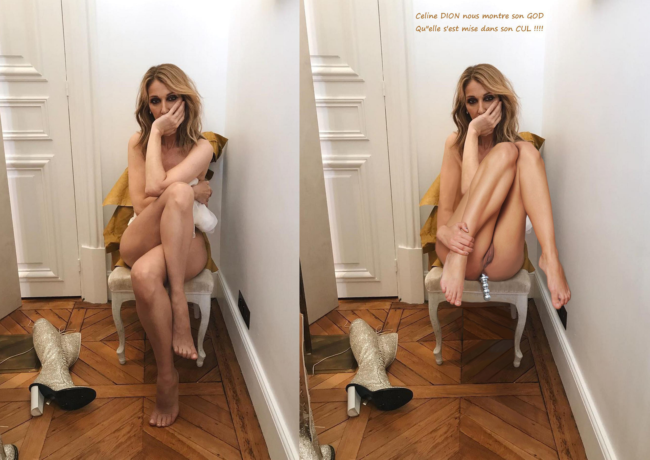 celine-dion-nude-real