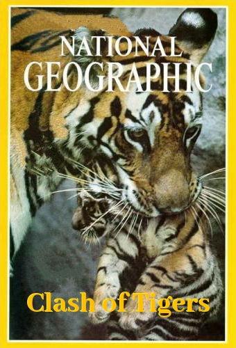 NGW: Схватка тигров / Clash of Tigers (2018) HDTV [H.264 / 1080i-LQ]