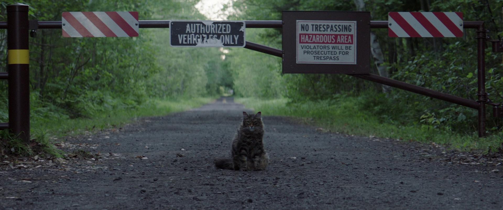Изображение для Кладбище домашних животных / Pet Sematary (2019) BDRip 1080p (кликните для просмотра полного изображения)