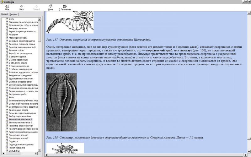 https://i4.imageban.ru/out/2019/07/14/c2ca12389b1c1bbe4824502e878c7604.jpg