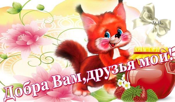 https://i4.imageban.ru/out/2019/07/19/5348f1f2b9ce1dbde762f96da5afe245.jpg