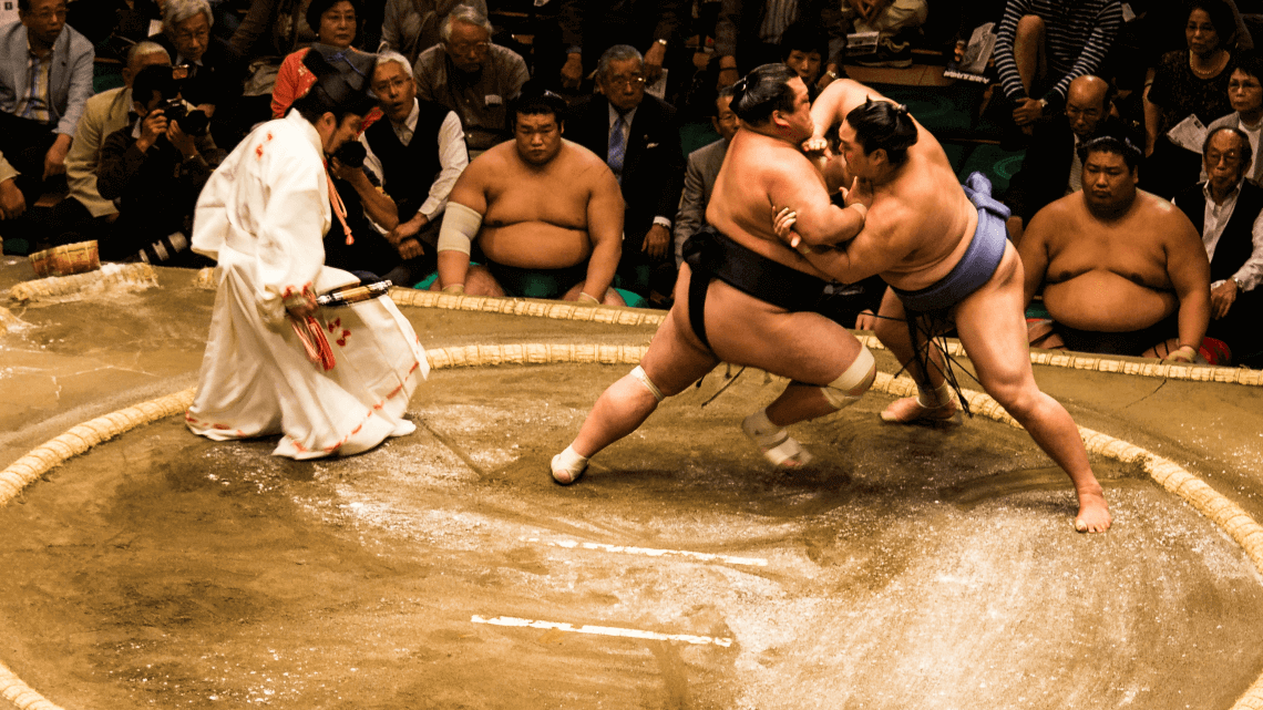 sumo-17.png