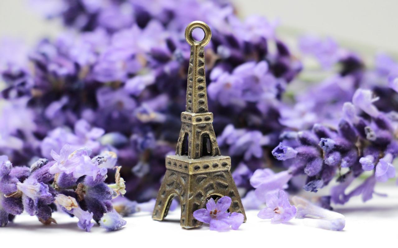 Символы Франции – Эйфелева башня и фиалки