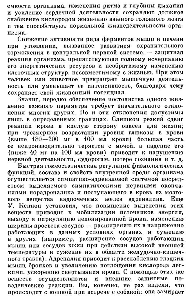 https://i4.imageban.ru/out/2020/06/02/53266864b0933f6e26bd34998f34ed25.jpg