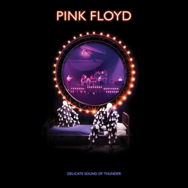Pink Floyd - Delicate Sound of Thunder [2019 Remix; Live] [24-bit Hi-Res] (2020) FLAC  скачать торрент