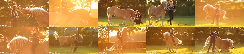 0298_FUN_Well_Dissolve_In_Stars_Horsetraining_With_Eva_Roemaat.jpg