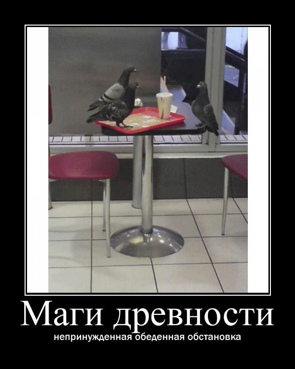 https://i4.imageban.ru/out/2021/07/17/0584195fae2d53cf45ccfadb8fbda6ee.jpg